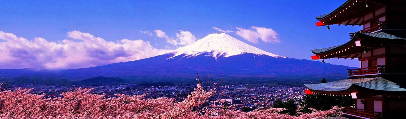 Tokyo Mt Fuji 05