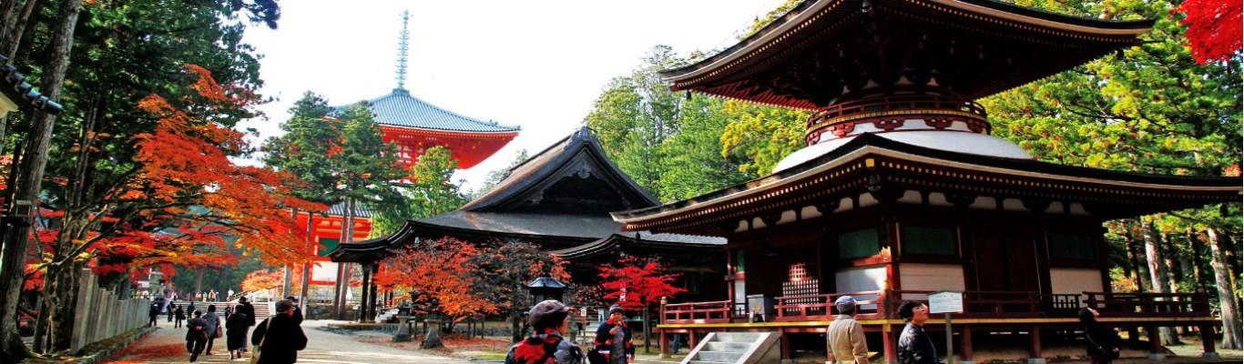 osaka kongobu ji temple 02